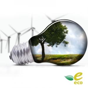 Экологический цикл
