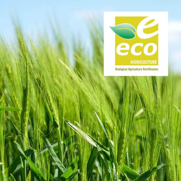 Certificación ecológica de agricultura ecológica de ECO