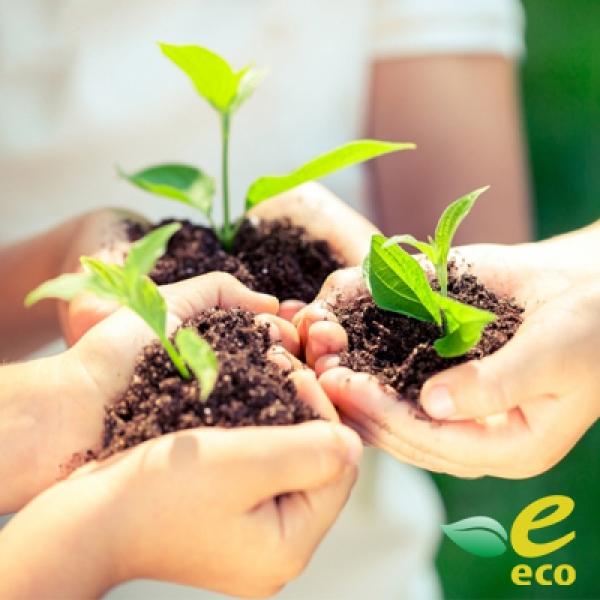 什麼是生態產品