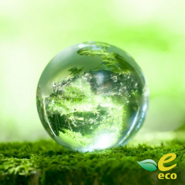 Как получить экологический документ