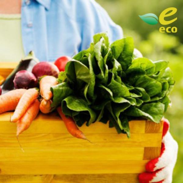 Экологический продукт